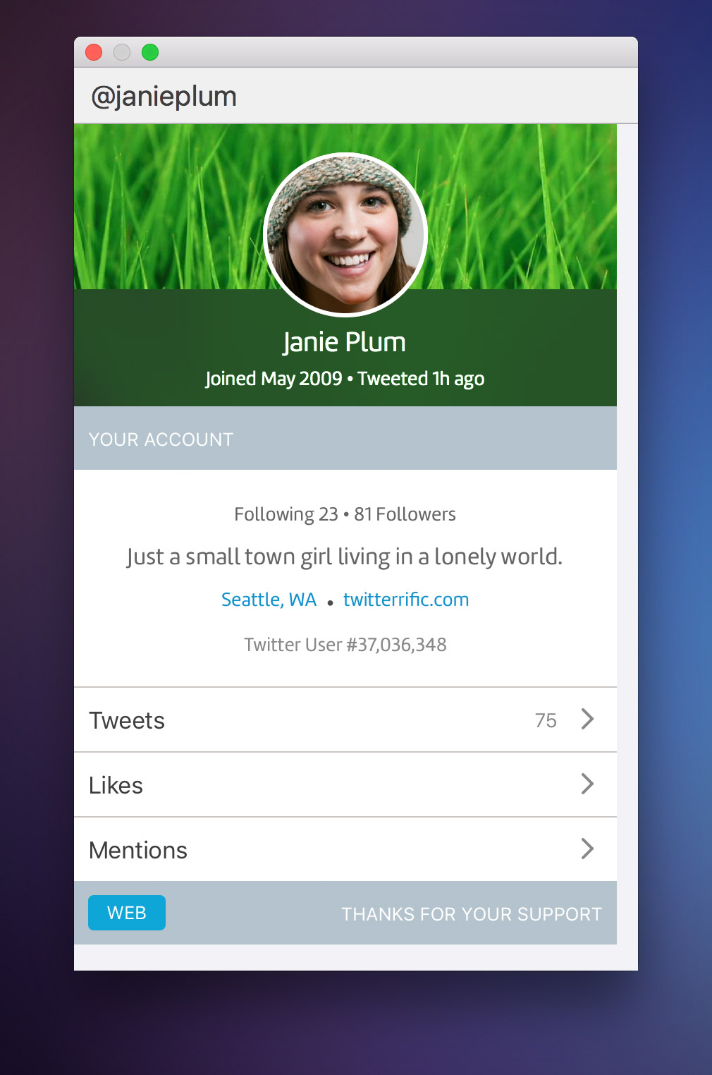 Twitterrific: Twitter Your Way